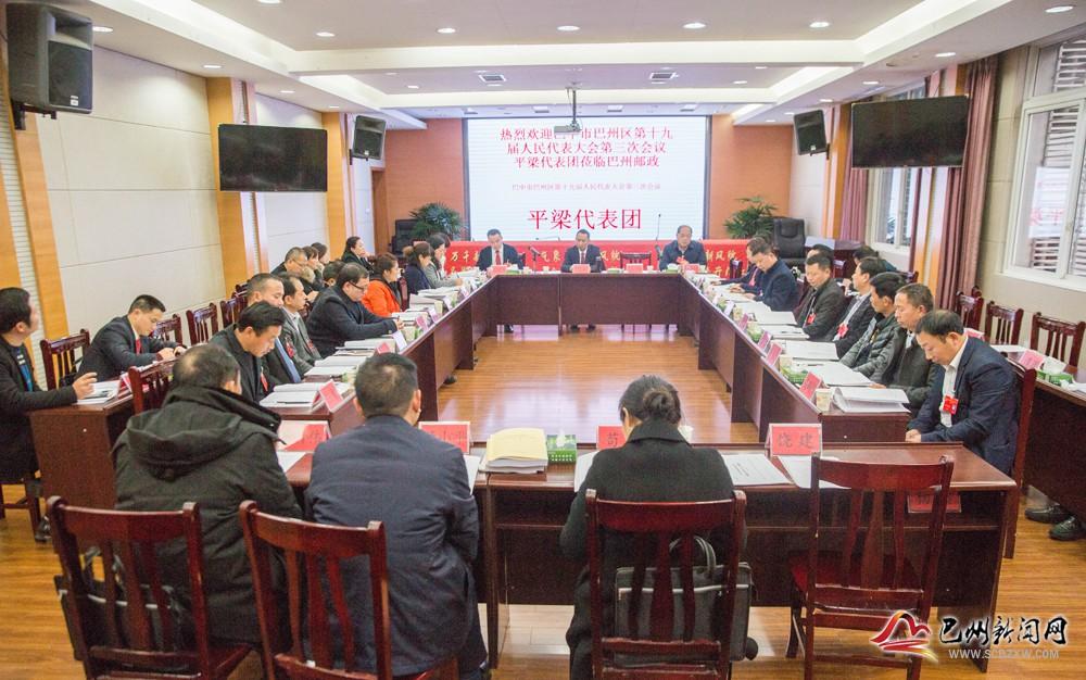 杨斌参加平梁代表团审议