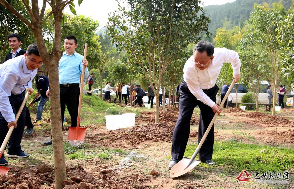 我区组织开展春季义务植树活动