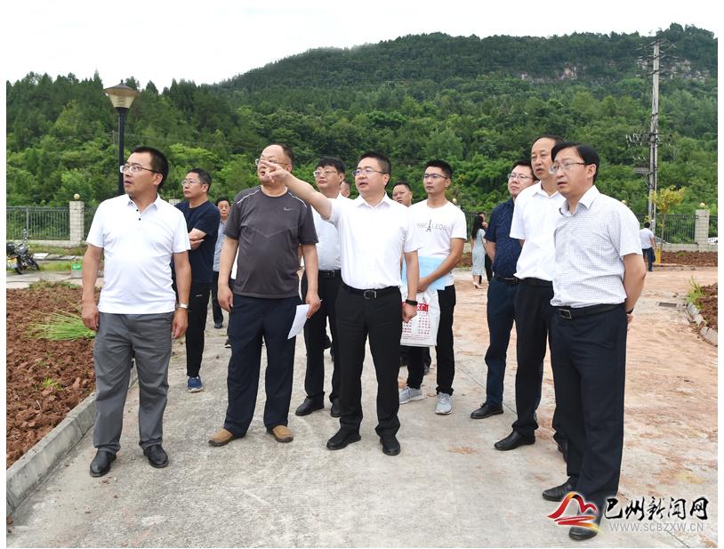 杨波调研中药材现代农业产业园推进情况