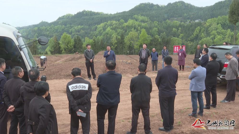 巴州区召开道地药材产业发展第六次流动现场推进会