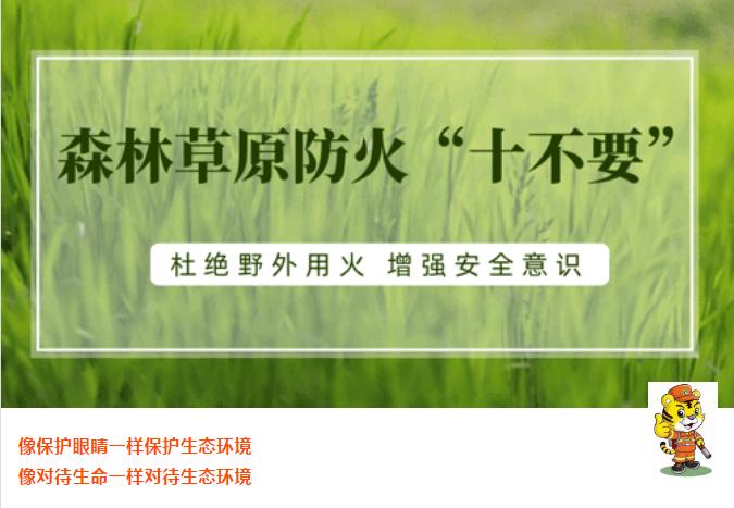 """谨记:森林防火""""十不要""""!"""