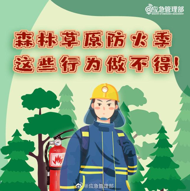 森林草原防火季,這些行為做不得